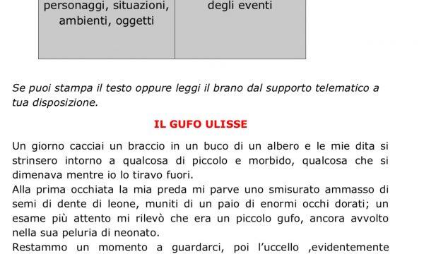 COMPITI ITALIANO 4